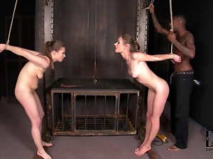 Blowjob, Bondage, Bound, Cumshots, Doggystyle, Facials, Ffm, Group sex, Interracial, Share, Threesome, Tied up