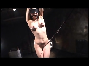 Blindfolded, Gagged, Japanese, Oiled, Small tits