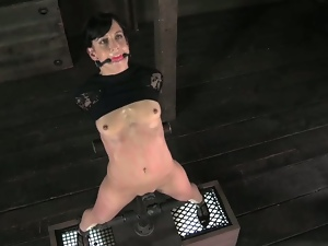 Bdsm, Bondage, Brunettes, Dungeon, Fetish, High heels, Pain, Sex toys, Torture, Vibrator, Whip