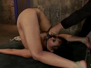 Basement, Bdsm, Bondage, Kinky, Slave, Tied up, Torture