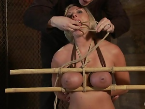 Bdsm, Bondage, Cum covered, Humiliation, Slave, Tied up, Torture, Wax