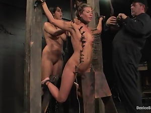 Basement, Bdsm, Bondage, Fetish, Slut, Torture