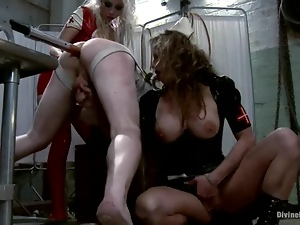 Bdsm, Dick, Femdom, Humiliation, Latex, Mistress, Pegging, Riding, Sexy, Slave, Torture