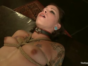 Bdsm, Bondage, Boobs, Gorgeous, Hogtied, Slut, Submissive