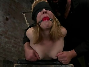 Bdsm, Blindfolded, Humiliation, Slave, Tied up, Torture