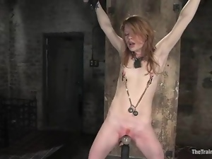Bdsm, Experienced, Fetish, Pain, Redheads, Torture