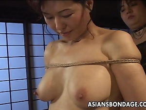 Asian, Babes, Bondage, Japanese