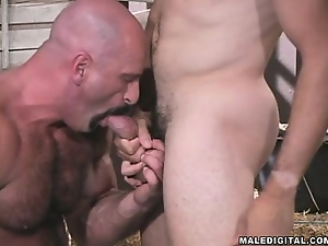 Blowjob, Gay, Hunk, Wrestling
