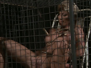 Bdsm, Big tits, Blondes, Bondage, Busty, Cage, Fake tits, Nipples
