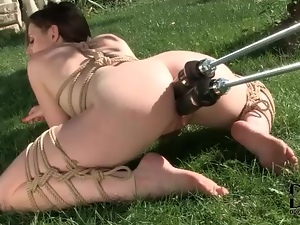 Anal, Bound, Dildo, Double penetration, Machine sex, Penetrating