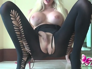 Lace, Sexy, Shemales, Tranny