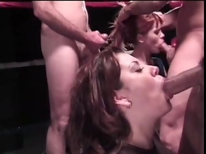 Blowjob, Competition, Cumshots, Orgy, Watching