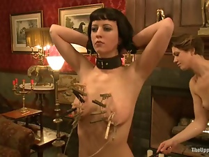 Bdsm, Chick, Master, Tied up, Torture