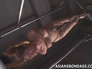 Asian, Bondage, Japanese, Orgasm