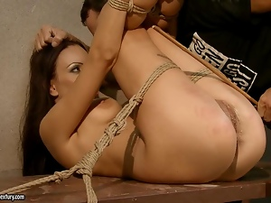 Babes, Bondage, Brunettes, Maledom, Pleasure, Punish, Shaved, Snatch, Whore