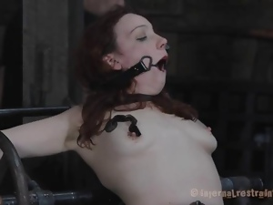 Bdsm, Bondage, Cfnm, Domination, Feet, Humiliation, Pain, Punish, Slave