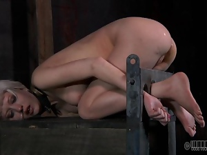 Bdsm, Bondage, Chick, Domination, Facials, Humiliation, Punish, Slave, Torture