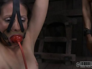 Bdsm, Beautiful, Bondage, Brutal, Domination, Humiliation, Punish, Slave