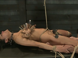Bdsm, Bondage, Brunettes, Dildo, Dungeon, Pain, Sex toys, Vibrator, Whip