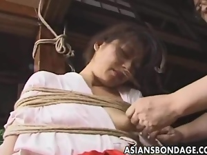 Asian, Bondage, Japanese, Tied up