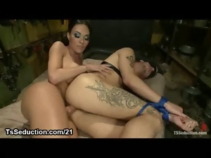 Anal, Ass, Bdsm, Birthday, Blindfolded, Bondage, Bound, Busty, Butt, Fetish, Hardcore, Hooters, Ladyboy, Seduce, Shemales, Tgirl, Tied up, Tranny, Transsexual, Transvestite